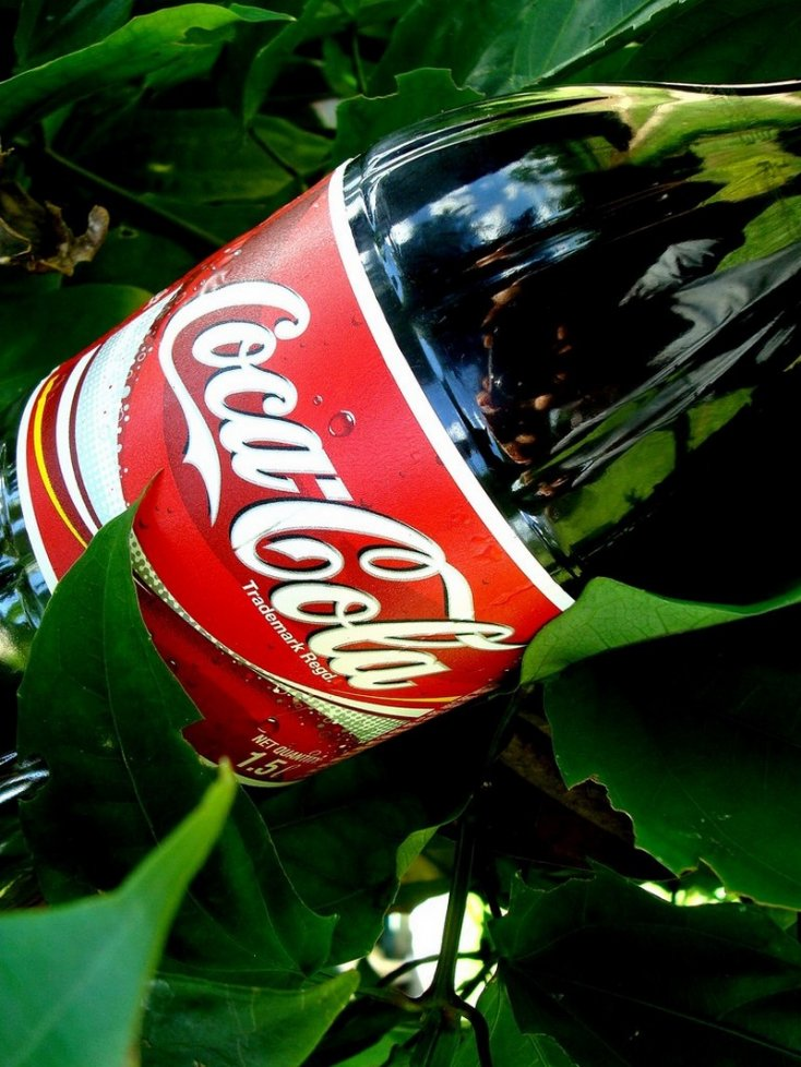 58fa194bd6d75_coca_cola_3